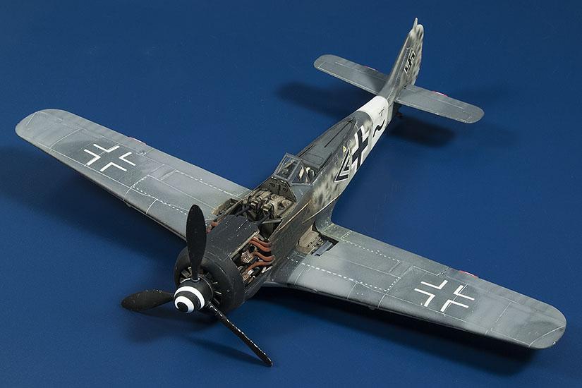 Fw-190_CA_300